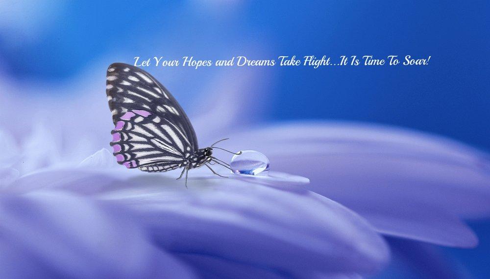 Water Butterfly 2.jpg