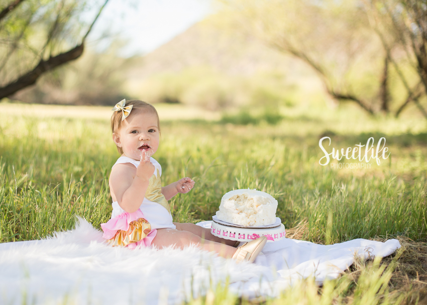 Baby's First Birthday session   {www.sweetlife-photography.com}