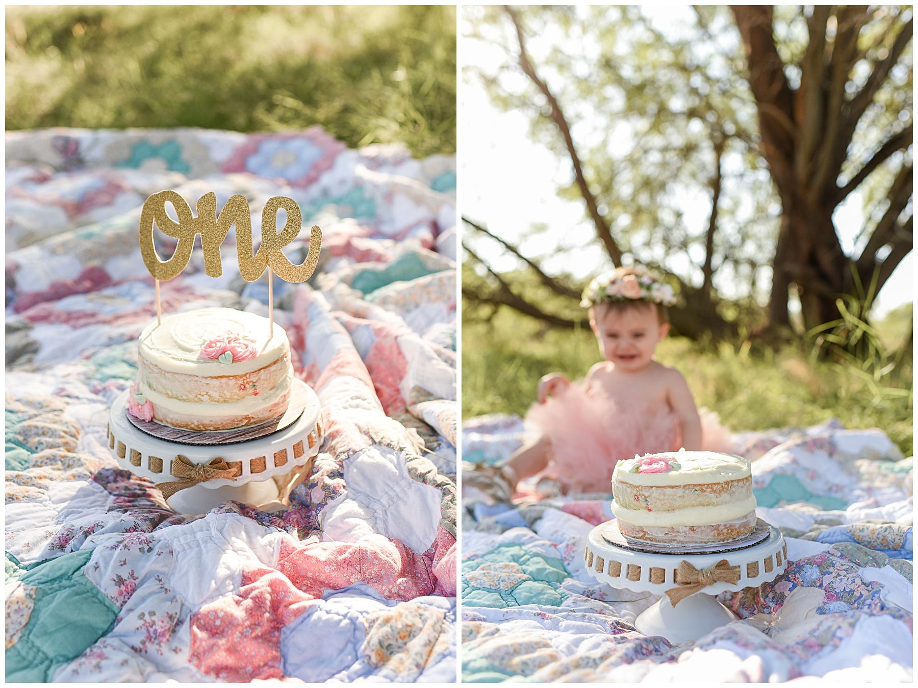 Phoenix Vintage First Birthday cake Smash session | SweetLife Photography