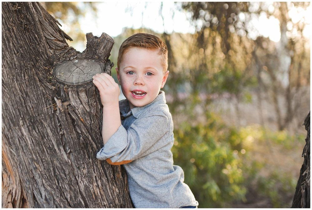 Little brother in a Tree | Phoenix Lifestyle Family Portraits