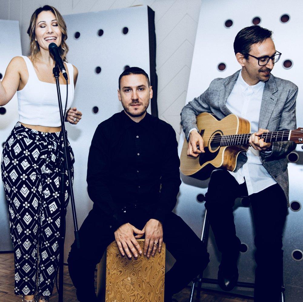 Acoustic_Trio_Ladylike.JPG