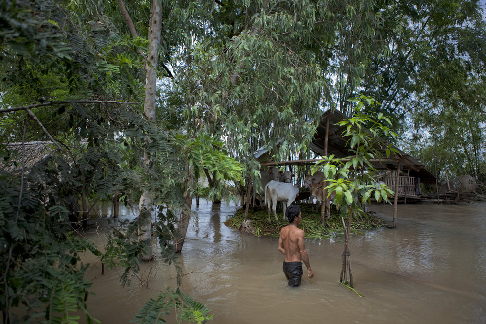 Oct. 20, 2011 - Prey Veng, Cambodia. A man walks through flood waters. His cows live on a small patch of raised land. More than 150 people died during the 2011 floods in Cambodia. © Nicolas Axelrod / Ruom