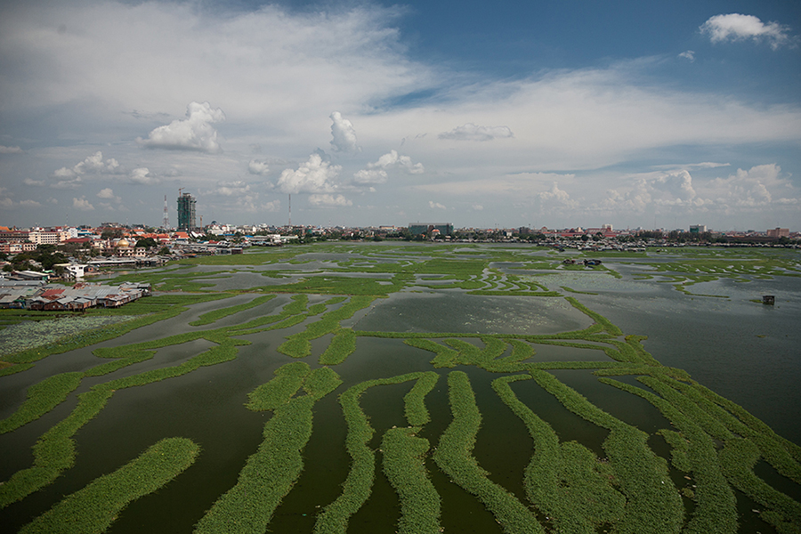 August 27, 2008 - Phnom Penh, Cambodia. Boeung Kak in central Phnom Penh, the expanse of water is patterned by morning glory plantations. © Nicolas Axelrod / Ruom
