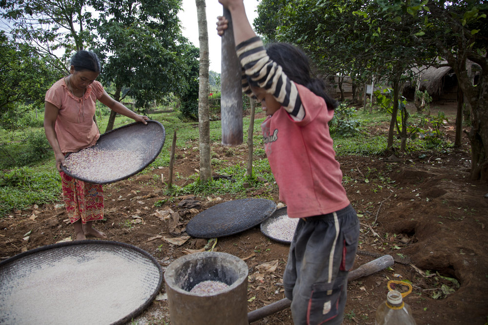 A young girl helps her mother make corn flour  at Dakdam village in Mondulkiri