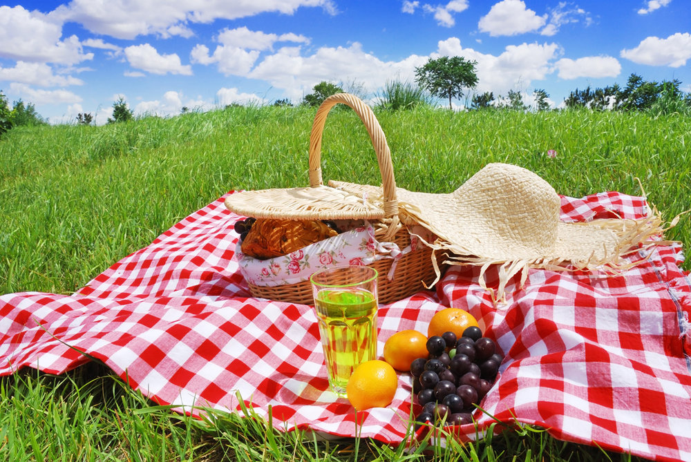 Family Picnic - Adult $10 Children $5