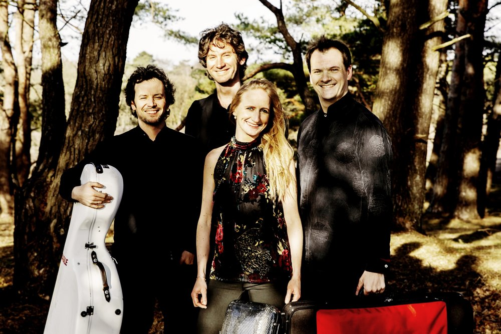 navarra quartet new.jpg