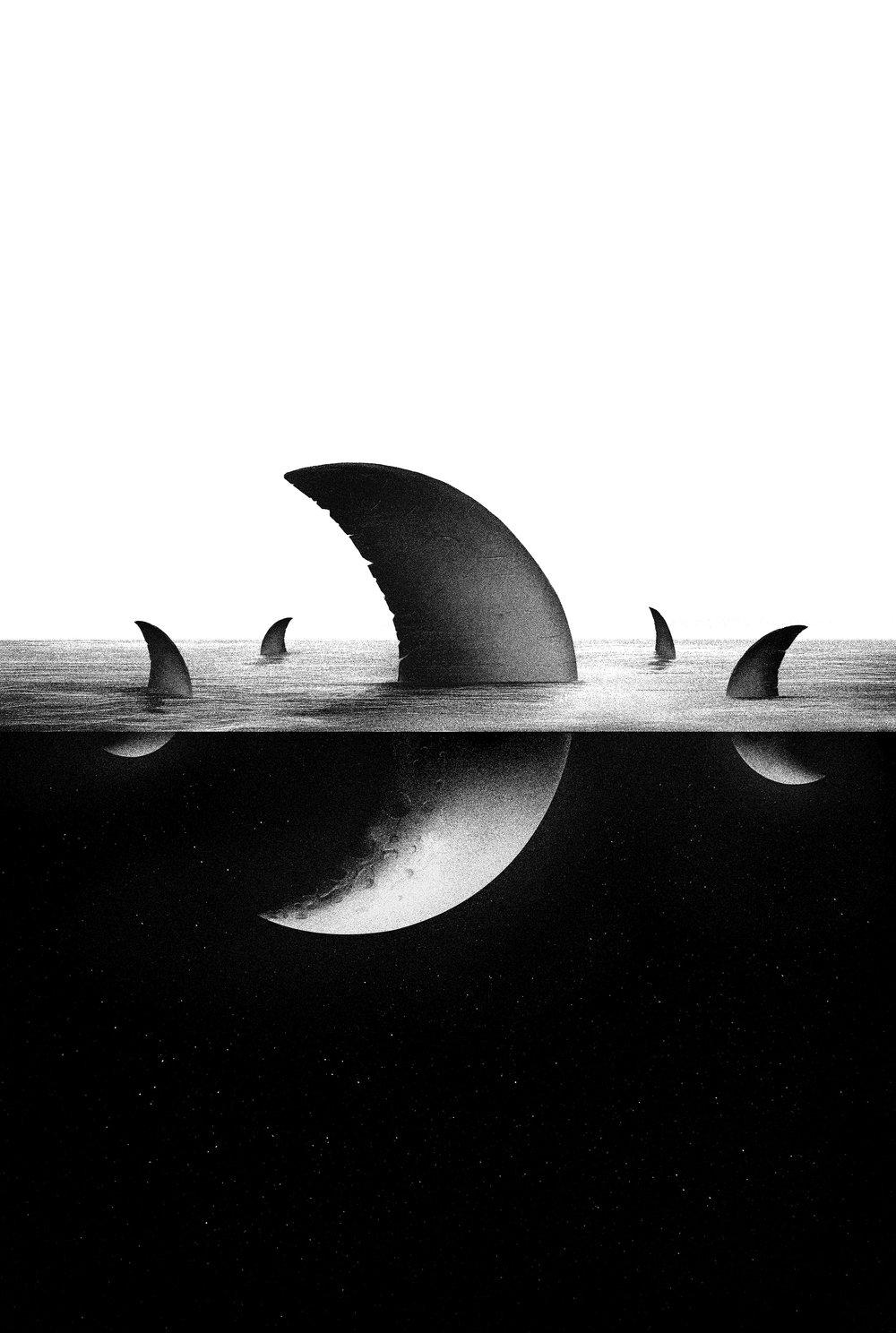 Sea the moon low2.jpg
