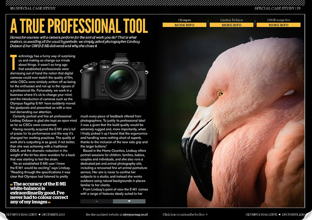 Olympus magazine December 2013 - Having been one of the world's first professional photographers to adopt the Olympus EM-1 camera, I was asked to talk about why I felt it was the ideal tool for pros. This four page advertorial was also run in Photo Professional Magazine and Amateur Photographer magazine.