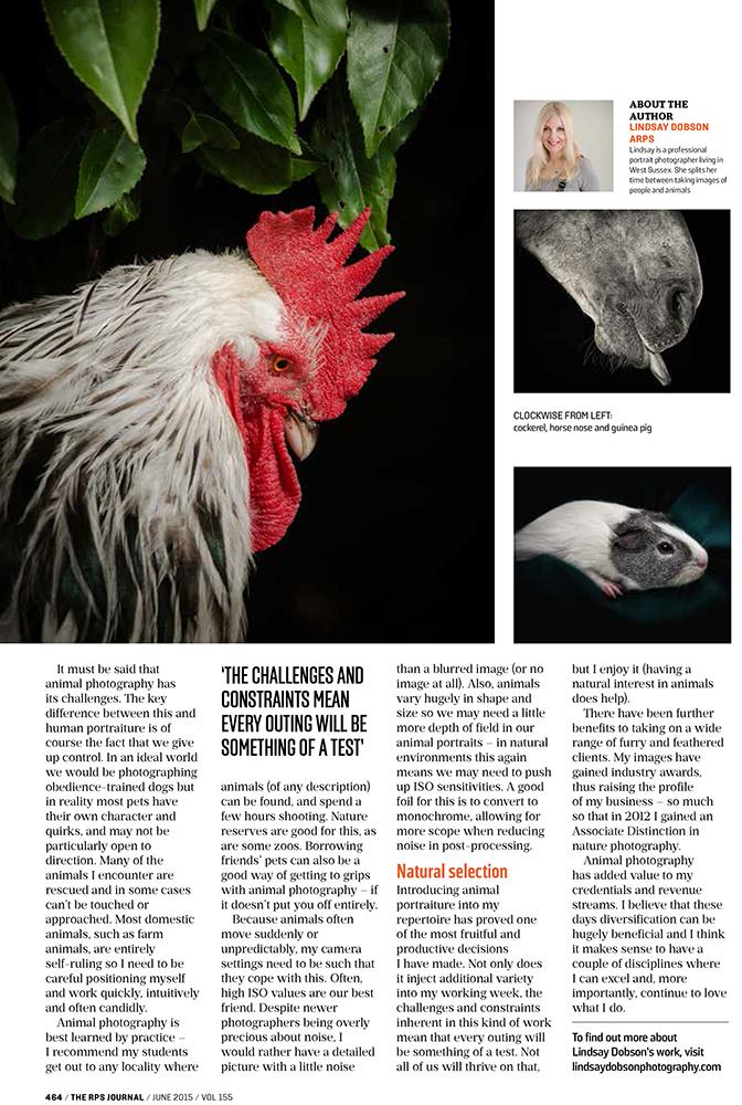 Lindsay Dobson Fine Art Animal Photography Journal of the Royal Photographic Society