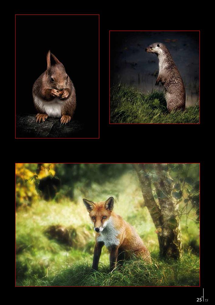 Lindsay_Dobson_Professional_Imagemaker_Magazine_2014_3.jpg