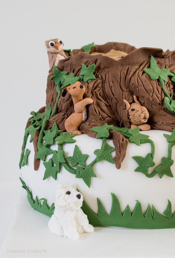 A Photographers Cake WEB-1033.jpg