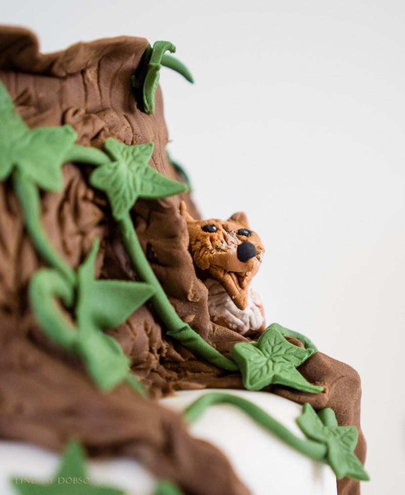 A Photographers Cake WEB-1039.jpg