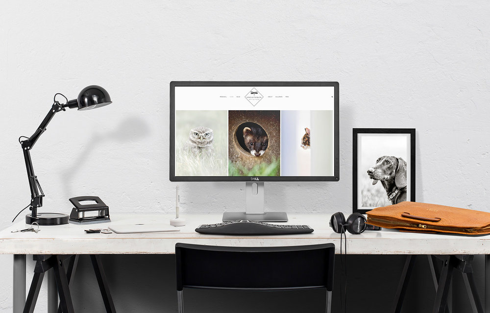 squarespace photography website with a responsive design
