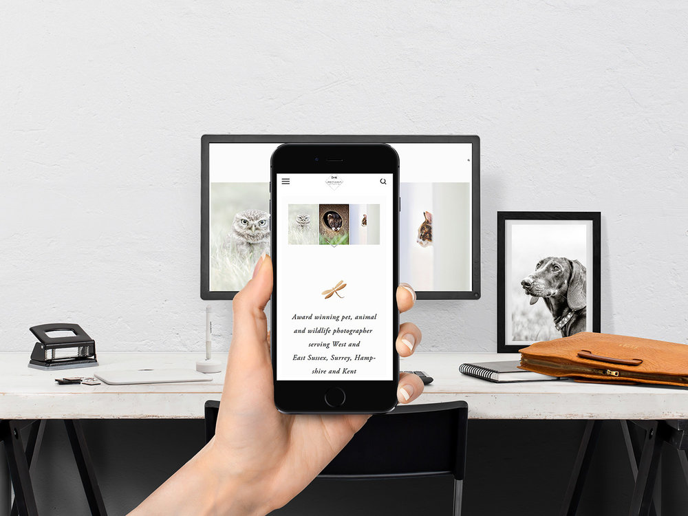 Why I switched my Pet Photography Website from Wordpress to