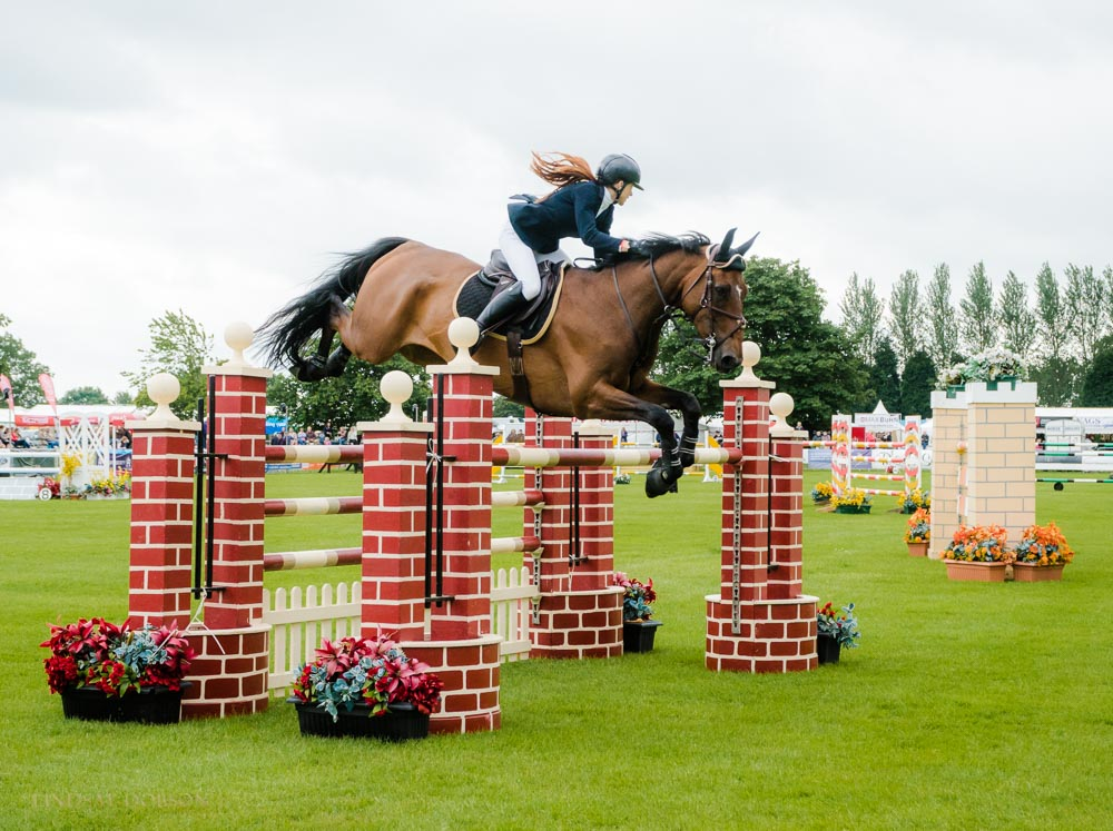 horse photographer west sussex
