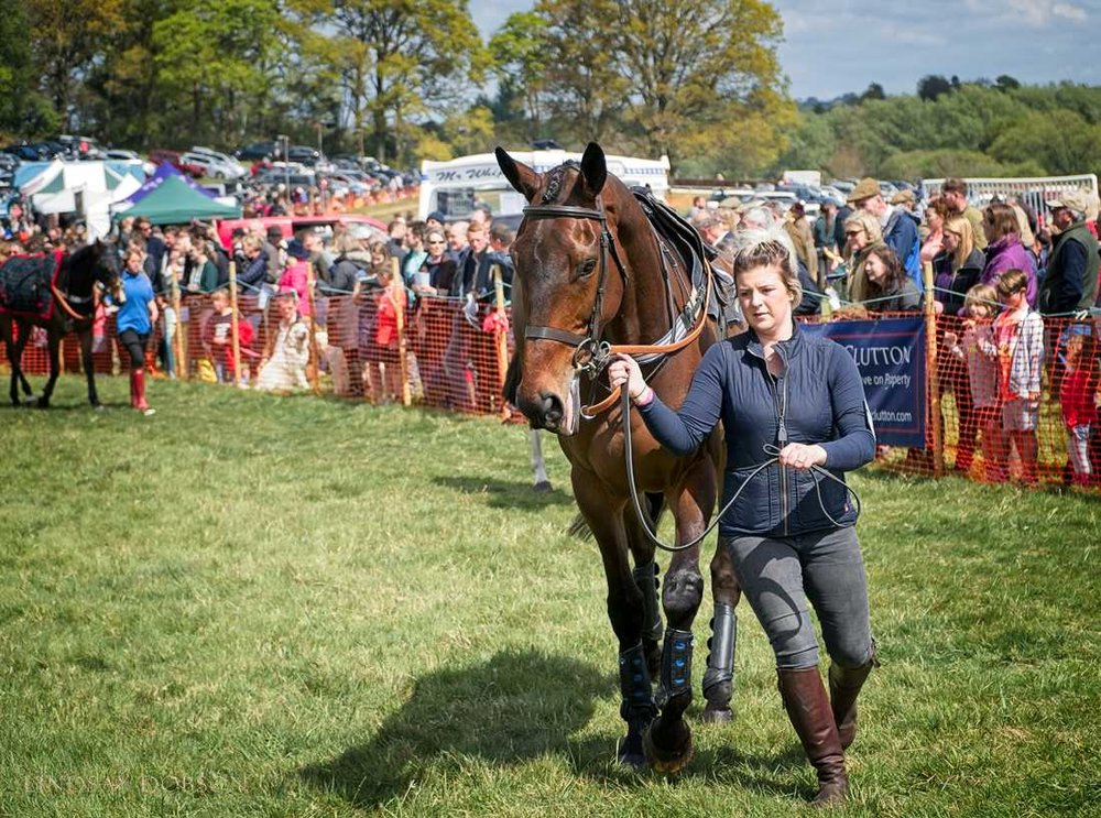 parham-point-to-point-races-20171002.jpg