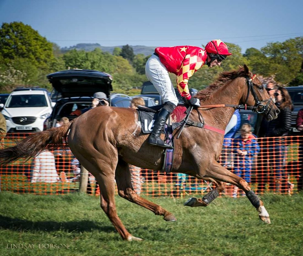 parham-point-to-point-races-20171010.jpg