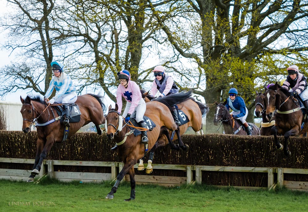 parham point to point races