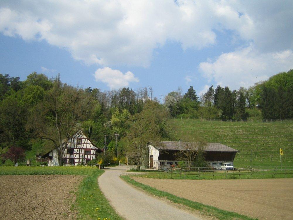 Egghof.JPG