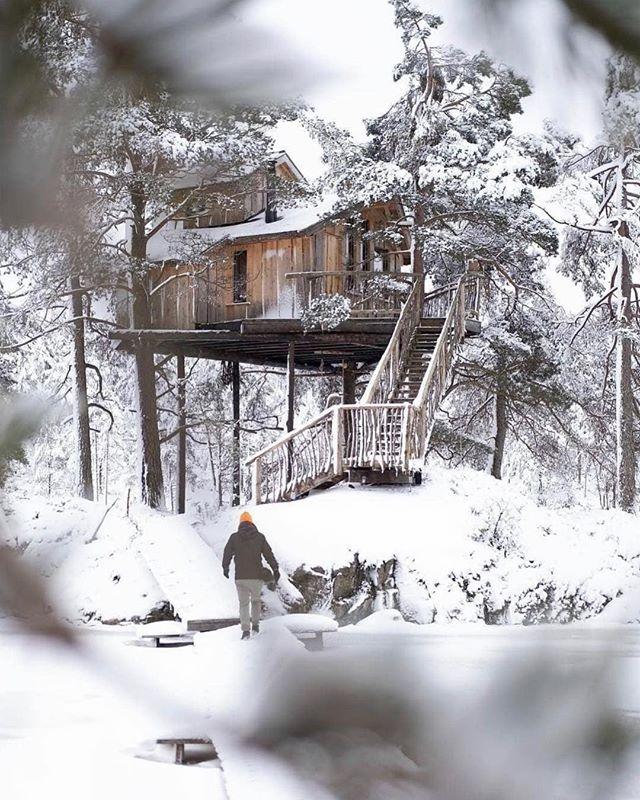 My kind of retreat 💭💭💭 - - - - -  @treetop_knut