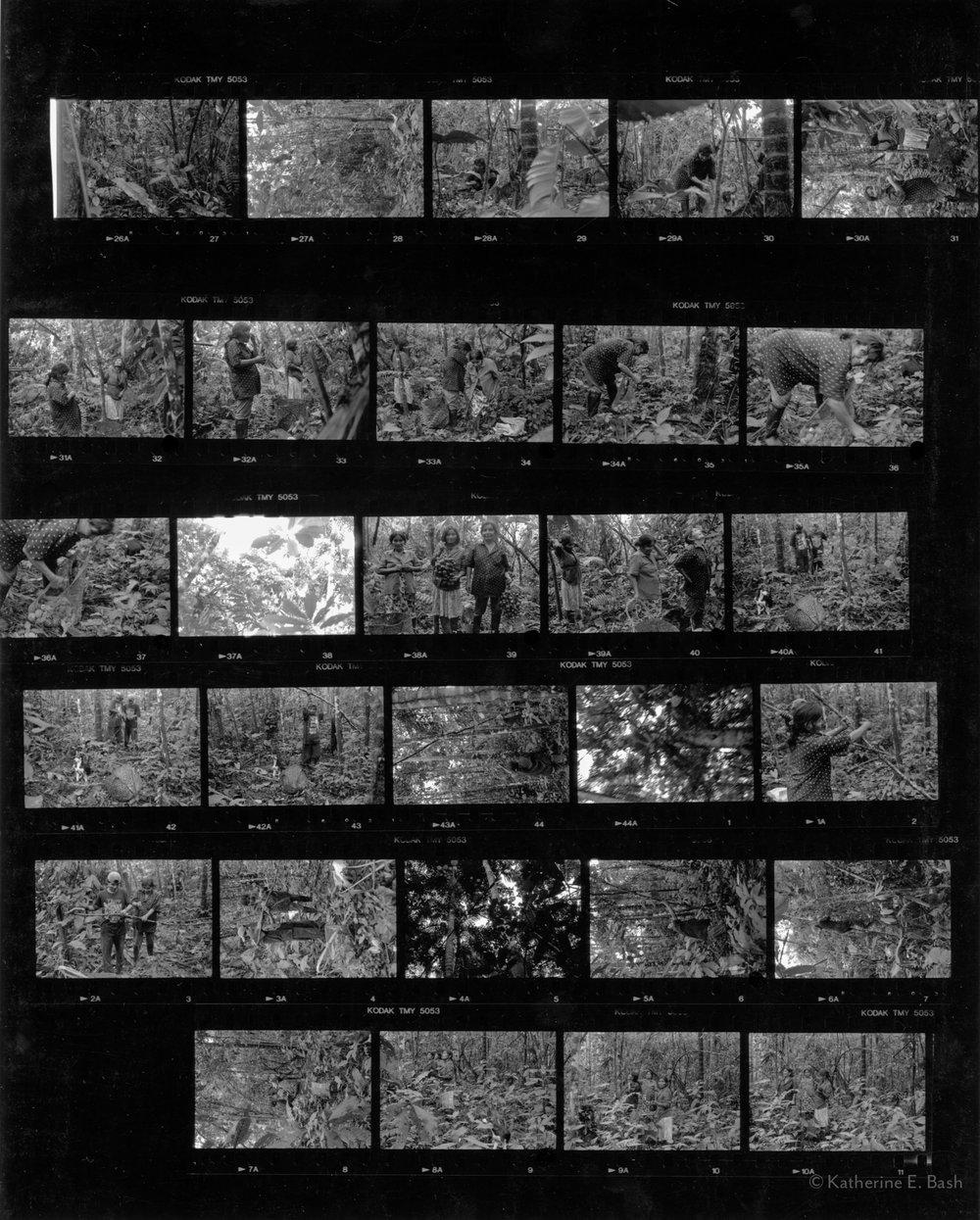 [13]-Contact-Sheet-1998-Ecuador-Contact-Sheet-Katherine-e-Bash014.jpg