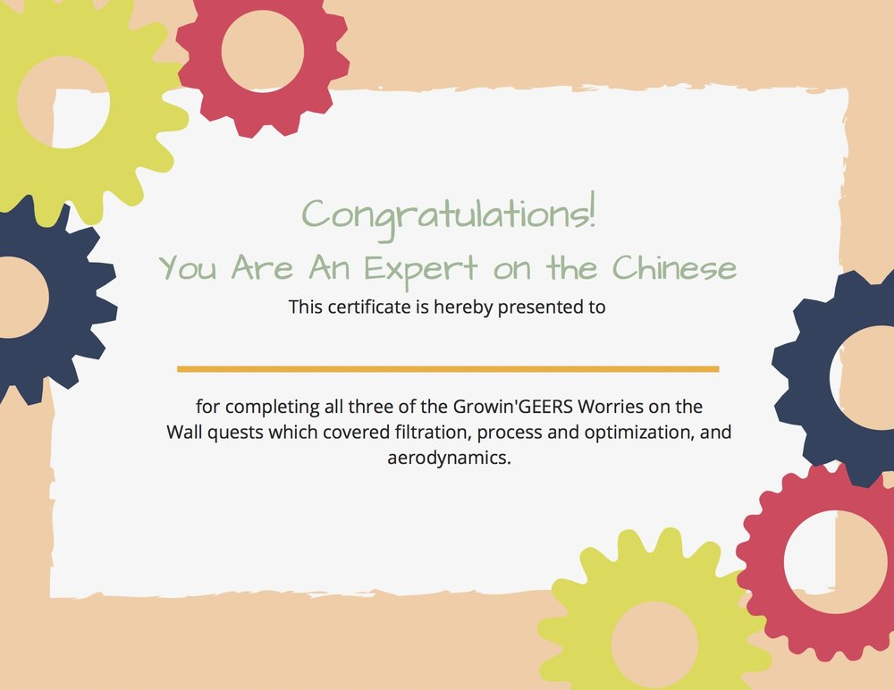 Worries on the Wall Completion Certificate.jpg