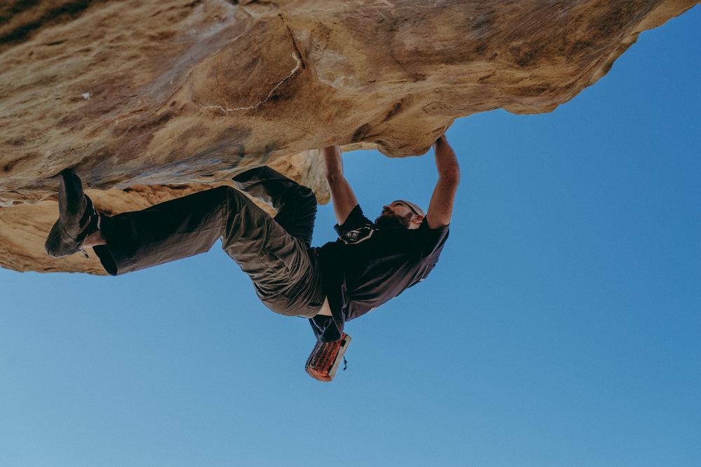 Cali-lizard-climbing-02-2018-93.jpg