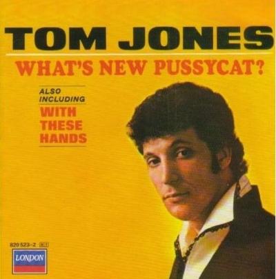 draft_lens2094721module10677912photo_1217286709Tom_Jones_Whats_New_Pussycat_lyrics