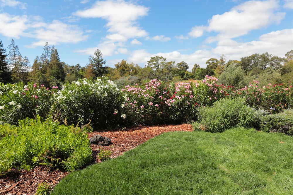 14433 Debell Rd Los Altos Hills Blu Skye Media-3166-X2.jpg