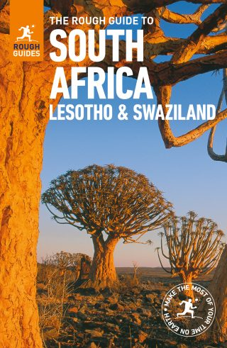 Rough-Guide-South-Africa-320x491.jpg