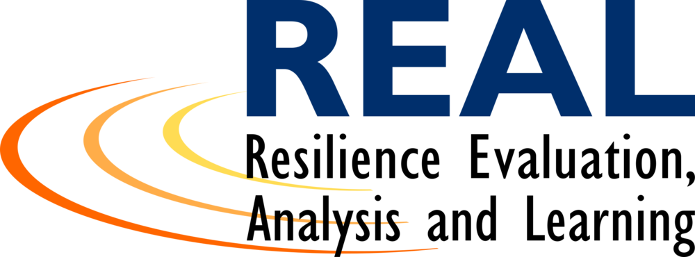 USAID:REAL Logo.png