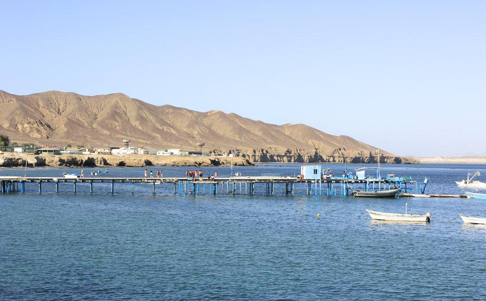 Pier in Turtle Bay.