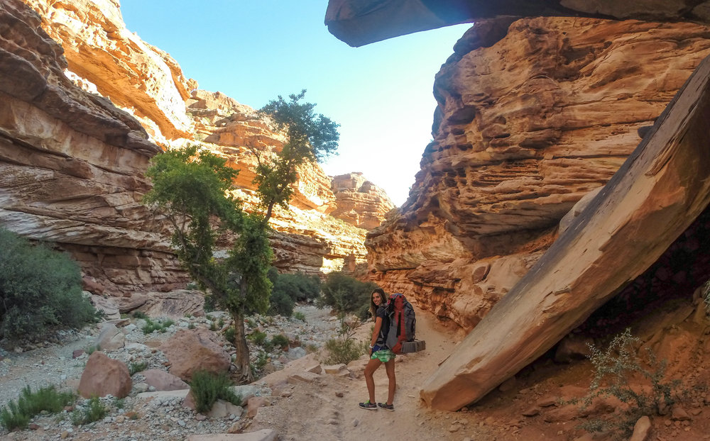 Thankful for the shade down in the canyon.