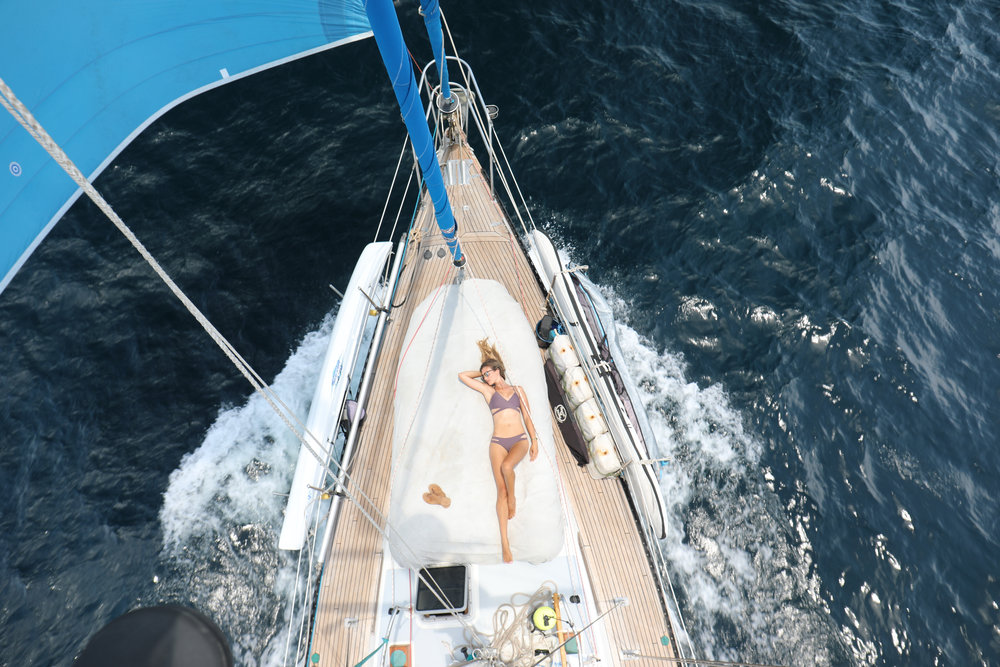 A perfect day sailing 77nm into Acapulco. We saw dolphins, turtles and even two sea snakes on our way.