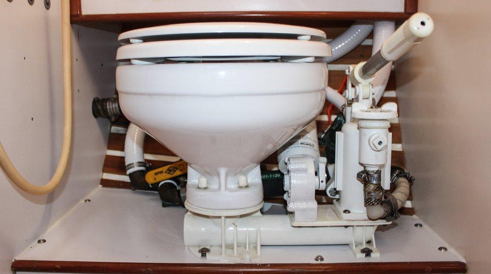 Toilet trouble -