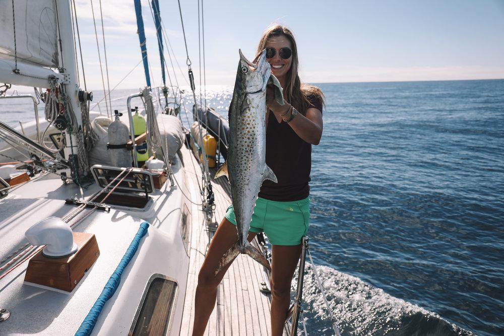 A sierra mackerel we caught on our way into El Gigante.