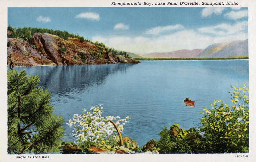 Postcard Sheepherder's Bay Lake Pend D'Oreille.jpg