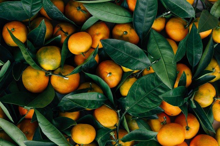 whole30-fruit.jpg