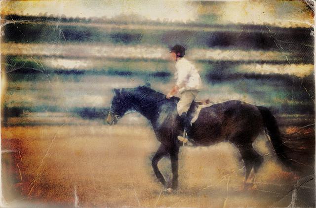 Horseback law