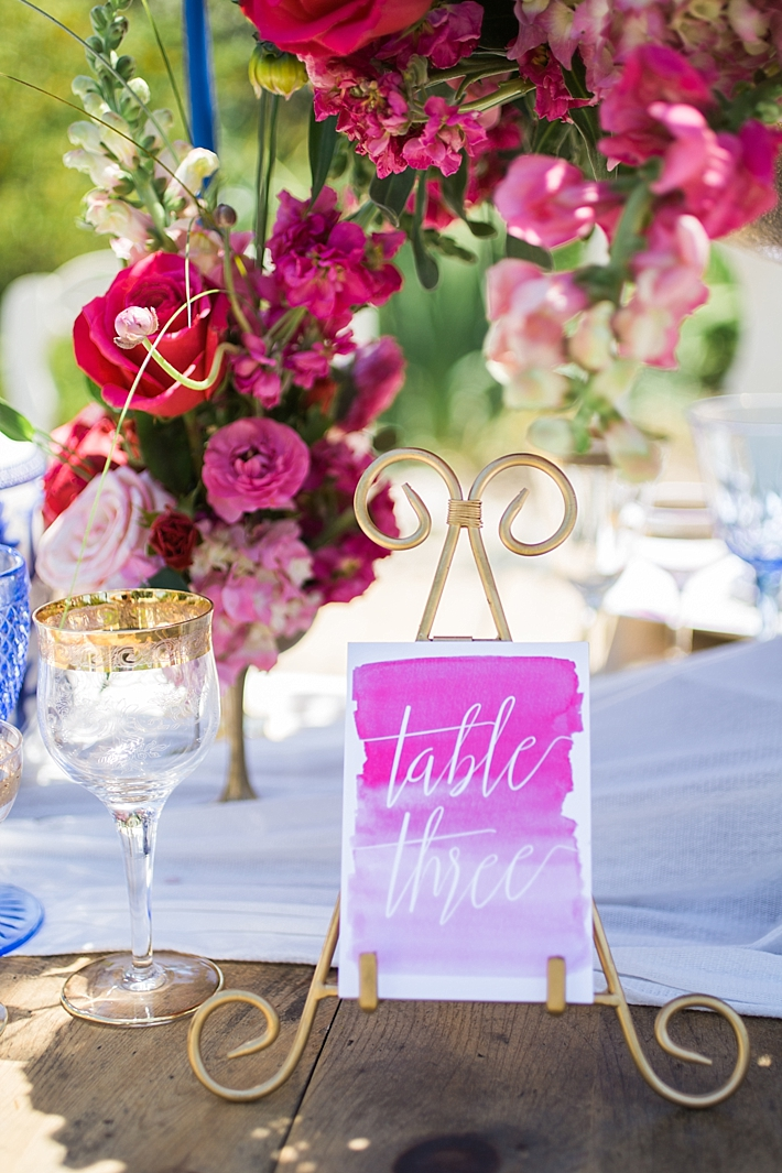 pink_and_blue_French_inspired_styled_shoot_18.jpg