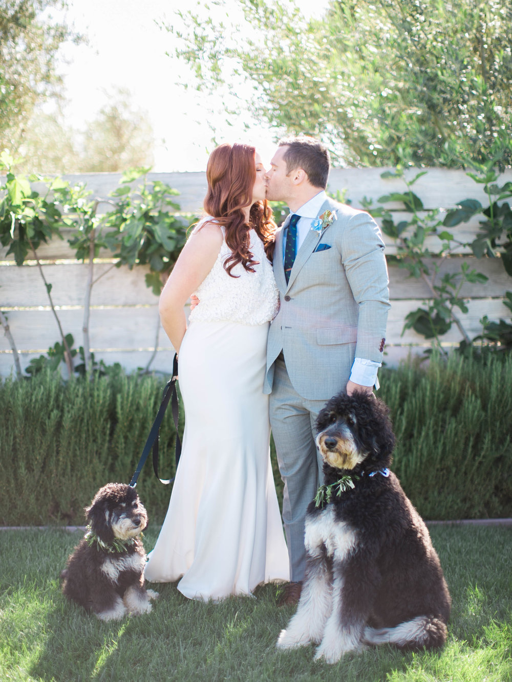 Couple sharing a kiss at their wedding with two dogs