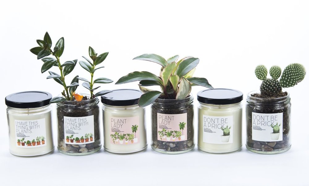 the best smell good candles on the west coast
