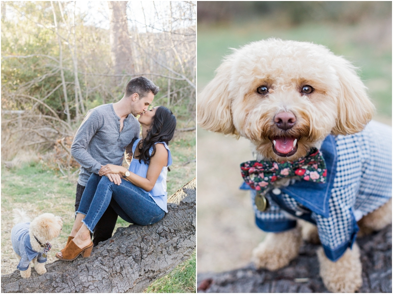 Engagement Session at Solstice Canyon with puppy