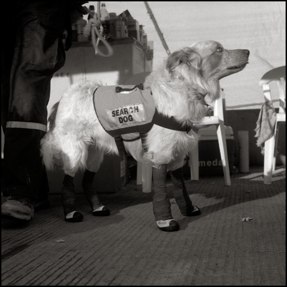 Erick & Pork Chop @ Ground Zero 2001 - Tracey Litt Photography