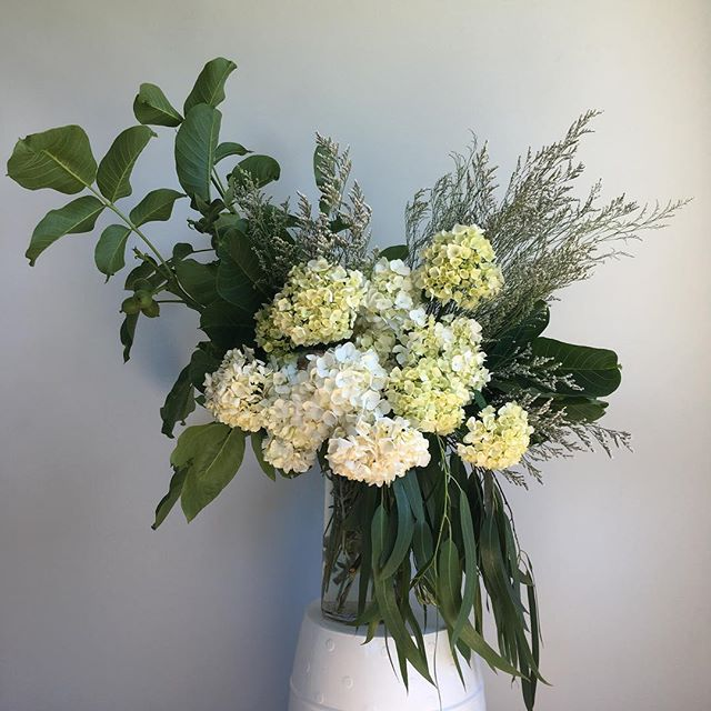 Cool whites for what feels like the first day of summer here in #christchurch. This is floral air con ☀️ ☀️ ☀️ ❄️❄️❄️😎 . . . . . . . . #floreticaflorist #christchurchflorist #nzflorist #florist #floreticafloristneutral #hydrangea #whiteflowers #instablooms #flowersofinstagram #flowers #flowersoftheday #ihavethisthingwithflowers