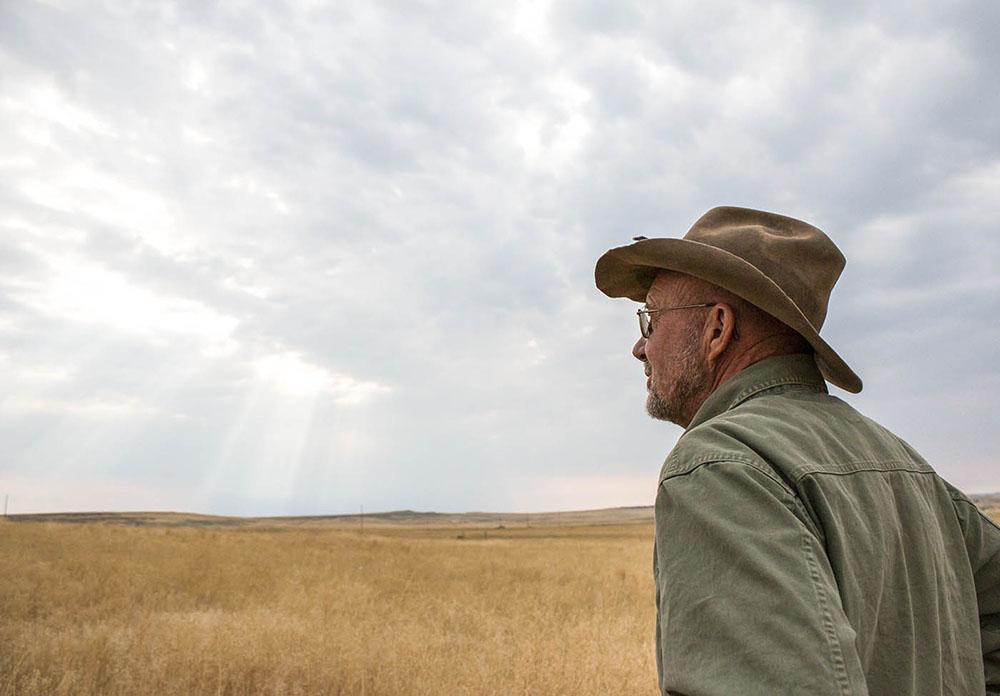 Steve looks out across the field as the sun rises in Shepherd, Montana.