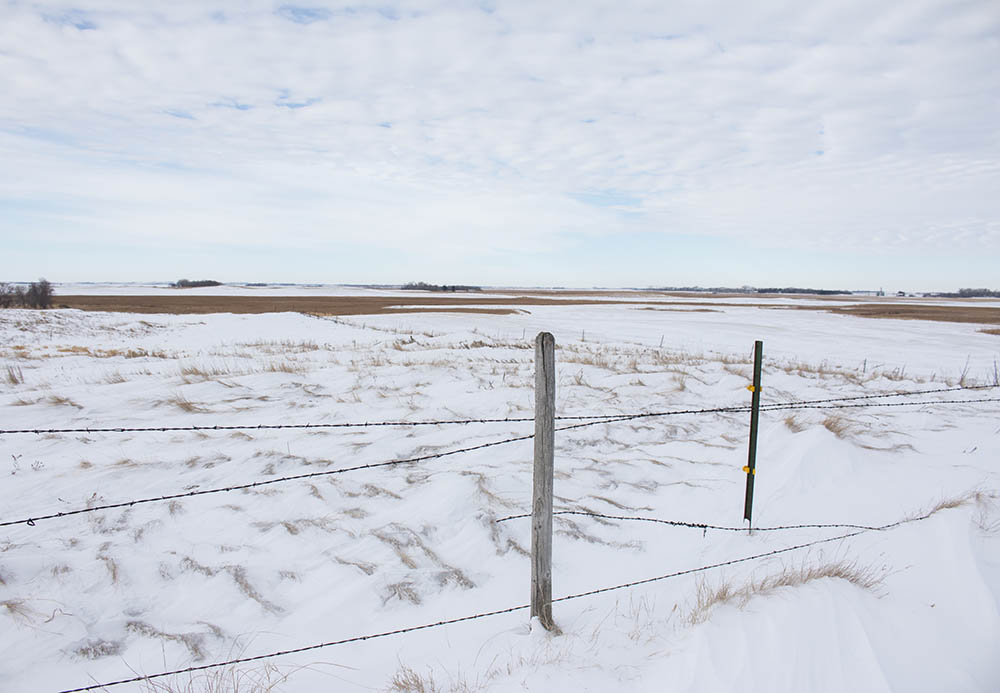 Standing in the St. Olaf Church cemetery, the CAFO is just a few hundred yards away from the cemetery.