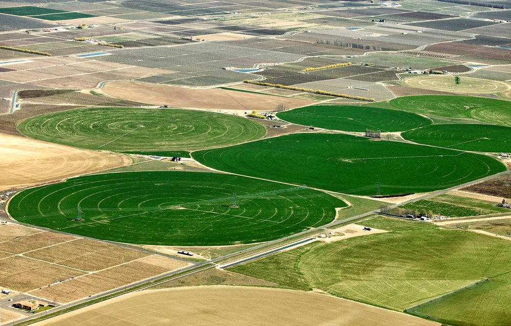 Irrigated pastures among dry soils.