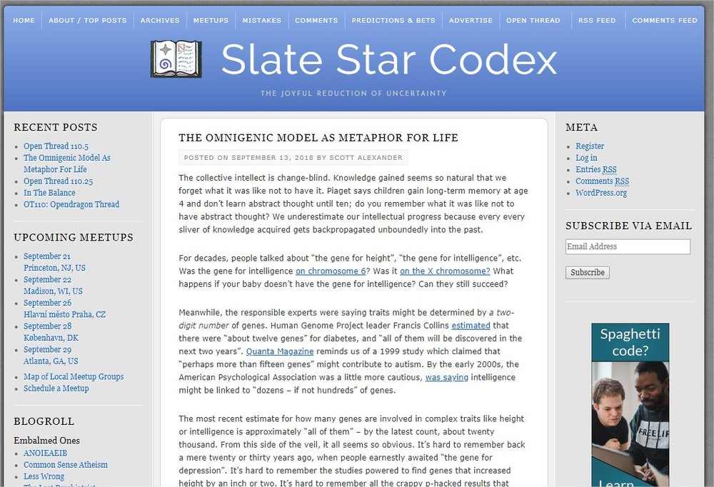 Slate Star Codex - Google Chrome.jpg