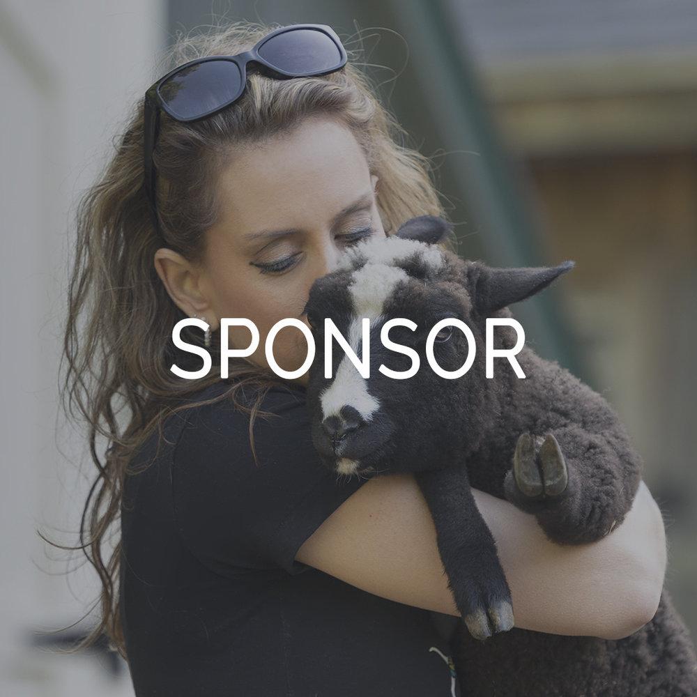 Sponsorship Thumbnail Riley Farm Rescue.jpg